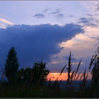 Закатный цвет тревожит небеса :: galina tihonova