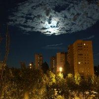 Вид из ок :: Алексей Ворон