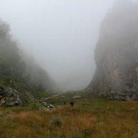Дорога в Сказку :: Светлана Попова