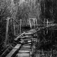 Мост :: Александр Хализов