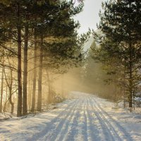 Туман :: Юлия Павленко