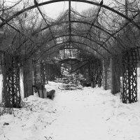 Заброшенная арка :: Юлия Панина
