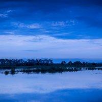 Рассвет над озёрами :: Олег Окселенко