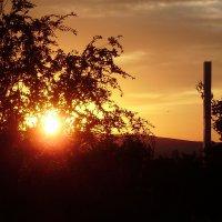 закат :: Оля К.