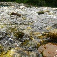 Река Снежная 2009 г. :: Larisa