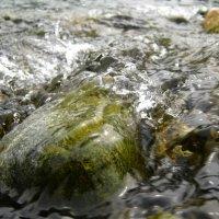 река Снежная 3 2009 г. :: Larisa
