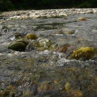 Река Снежная 5 2009 г. :: Larisa