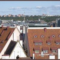 Крыши старого города. :: Jossif Braschinsky