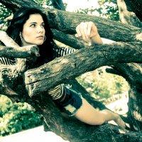 На дереве :: Натали N