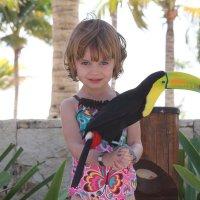 Какая красивая птица :: Людмила Барбашова