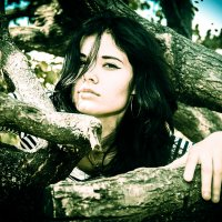 среди деревьев :: Натали N