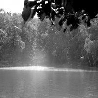 Smoke on the water :: Anna Kurbatova