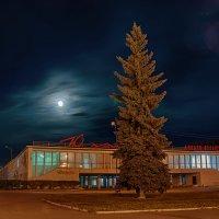 If on a moonlit night... :: Дмитрий Костоусов