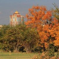 Осень :: Vlad Сергиевич