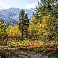 хожу и наслаждаюсь бескрайней красотой Хибинских гор :: Георгий