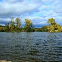 Листопад, листопад, листья желтые летят ... :: Евгений Юрков
