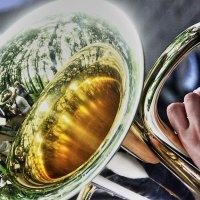 Соло для трубы и Осени :: олег свирский