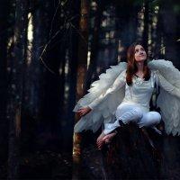 ангел :: Анна Семенова