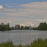 На берегах Южного Буга :: Ольга Винницкая (Olenka)
