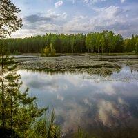 Купание облаков :: Юрий Велицкий