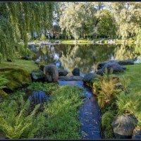 Tallinn, park Kadriorg. :: Jossif Braschinsky