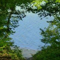 Окно с видом на озеро :: Татьяна Лобанова