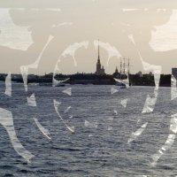 музы Санкт Петербурга :: golfstrim