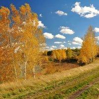 Осень :: Владимир Зыбин