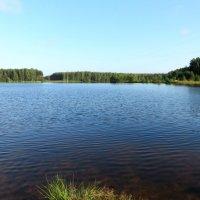 Озеро. :: Ирина ***