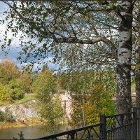 Осенний пейзаж с березой :: lady v.ekaterina