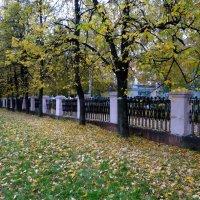 Краски осени. :: Елизавета Успенская