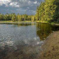 Осенний бриз :: Юрий Велицкий