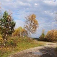 Янтарной осени пейзаж :: Галина Кан