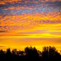 небо перед самым восходом :: Валерий Гудков