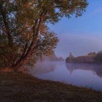 Туманный рассвет... :: Евгений Осипов