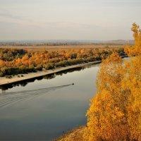 Осень на Оке :: Вячеслав Маслов