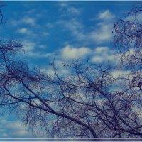 Небо октябрь :: Анастасия Сосновская
