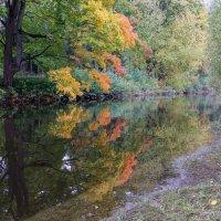 Осень на Каменном :: skijumper Иванов
