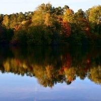 Отражение осени в зеркальной глади озера... :: Ольга Русанова (olg-rusanowa2010)