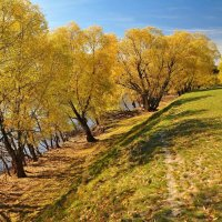 Осень на берегу :: Владимир Зыбин