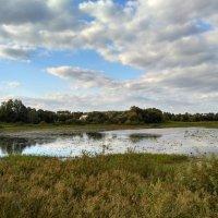Октябрь в Беларуси :: Марина Ворошко (Митьковец)