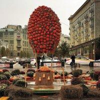 Четырехметровый «воздушный шар». :: Татьяна Помогалова