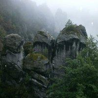 Эльбские песчаниковые горы.... :: Алёна Савина