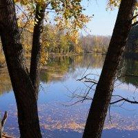 Осенний пруд :: Наталия Григорьева