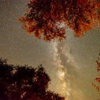 Млечный путь :: Dmitriy Sagurov