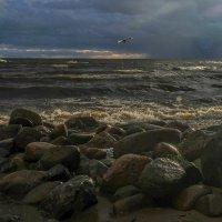 камни на берегу попали на закате :: Георгий