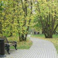 Осень пришла... :: Ирина - IrVik