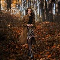 Прогулка в осеннем лесу :: Илья