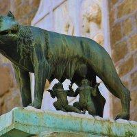 Капитолийская волчица :: Natali Positive