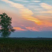 Осень, утро... рассвет... :: Александр Никитинский
